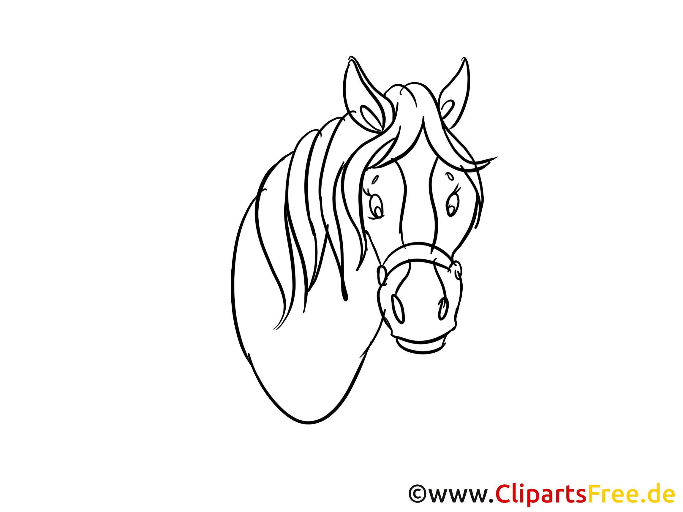 20 der besten ideen für pferdekopf ausmalbilder  beste