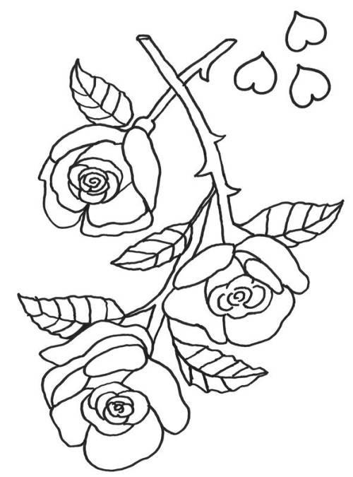Rosen Ausmalbilder  Kostenlose Malvorlage Muttertag Rosen zum Ausmalen zum