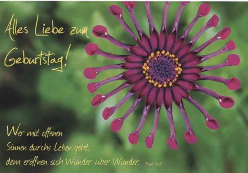 Schöne Geburtstagskarten  Schöne Geburtstagskarte Alles Liebe zum Geburtstag Blume