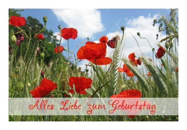 """Schöne Geburtstagskarten  Schöne Geburtstagskarten """"Mohn"""" KLAPPKARTE & KUVERT"""