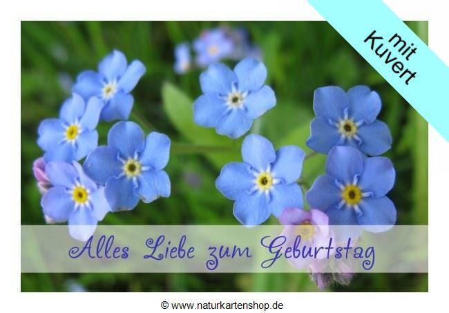 """Schöne Geburtstagskarten  Schöne Geburtstagskarten """"Vergissmeinnicht"""" KLAPPKARTE"""