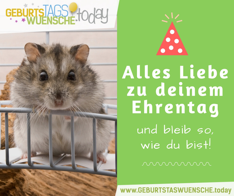 Schöne Geburtstagswünsche  Schöne Geburtstagswünsche & lustige Geburtstagssprüche