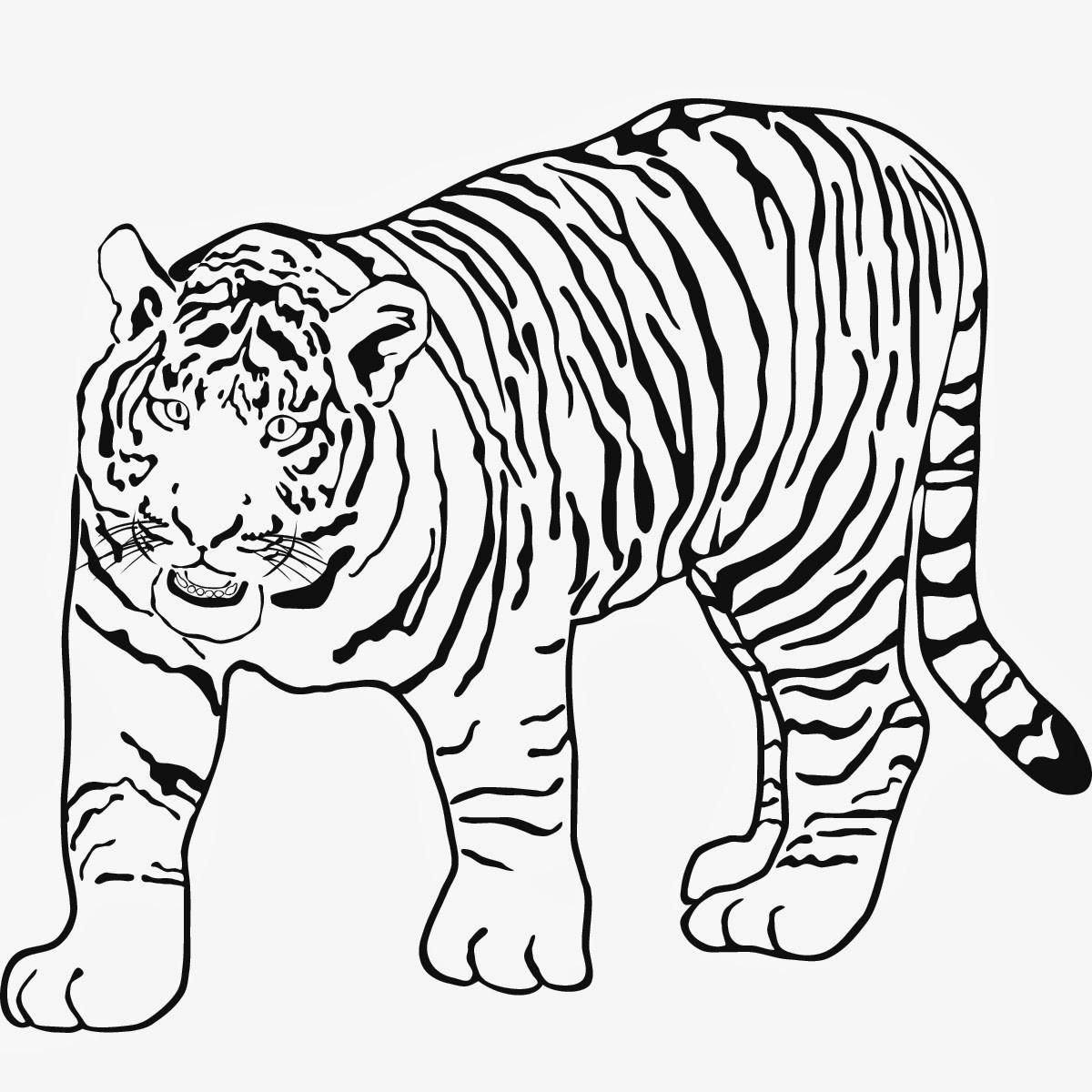 20 Ideen Für Tiger Ausmalbilder Beste Wohnkultur Bastelideen