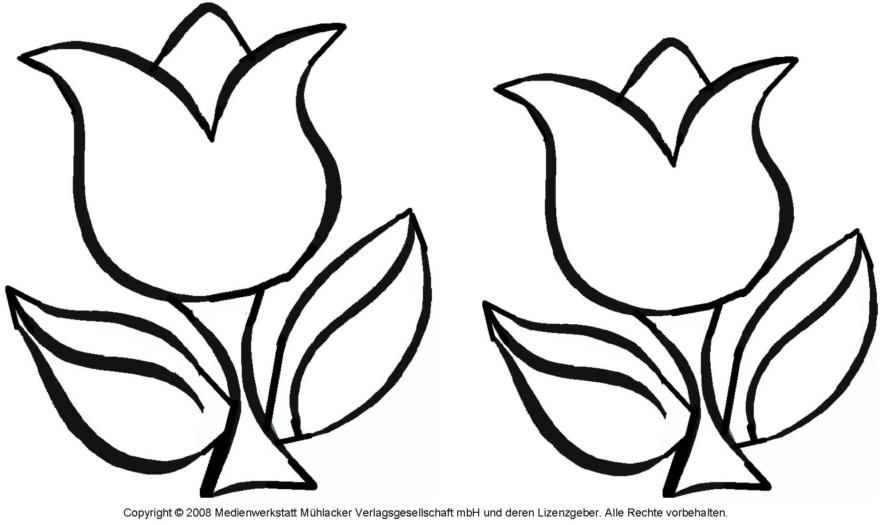 20 besten ideen tulpen ausmalbilder - beste wohnkultur