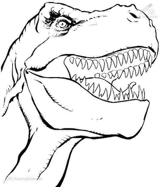 Tyrannosaurus Rex Ausmalbilder  t rex ausmalbild – Ausmalbilder für kinder