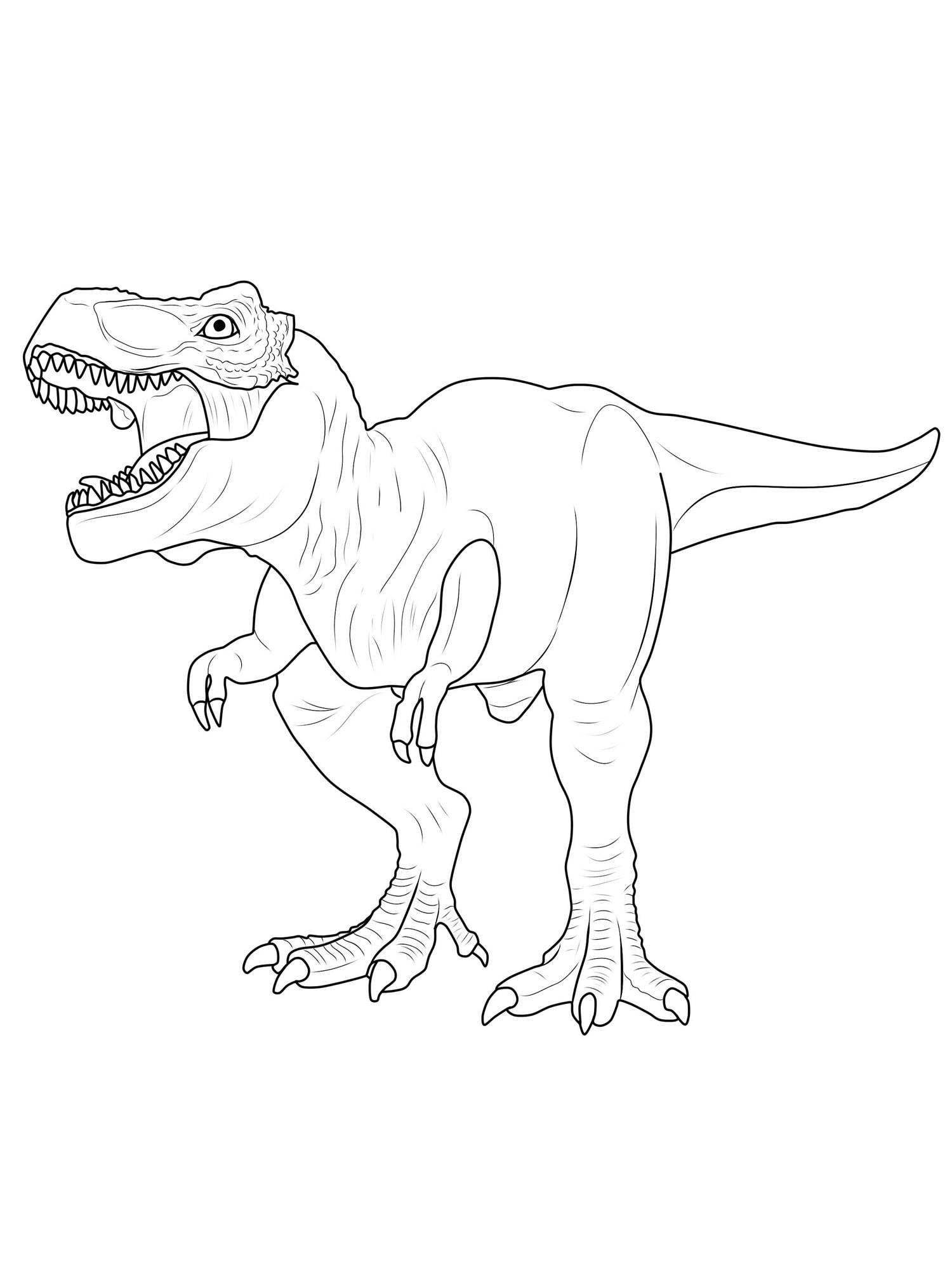 Tyrannosaurus Rex Ausmalbilder  Ausmalbild Dinosaurier und Steinzeit Dinosaurier ausmalen