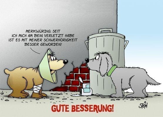 Uli Stein Geburtstagsbilder  Gute Besserung catprintcards Uli Stein