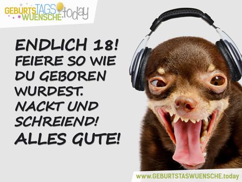 """Versaute Geburtstagswünsche  Sprüche zum 18 Geburtstag lustiges Bild """"Endlich 18"""""""