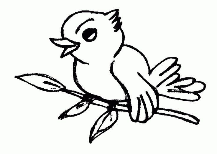 Vögel Ausmalbilder  Πάνω από 25 κορυφαίες ιδέες για Ausmalbilder vögel στο