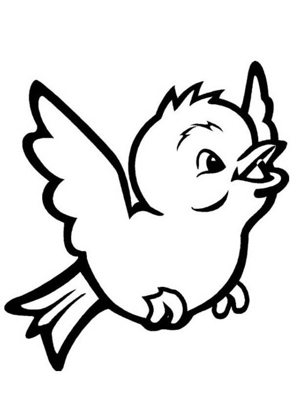 Vögel Ausmalbilder  Vögel ausmalbilder 11
