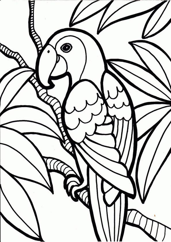 Vögel Ausmalbilder  Vögel ausmalbilder 15