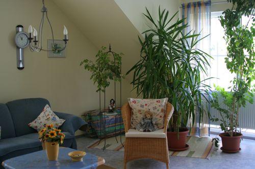 Wohnzimmer Pflanzen  Wohnzimmer pflanzen bilder Ihr Traumhaus Ideen