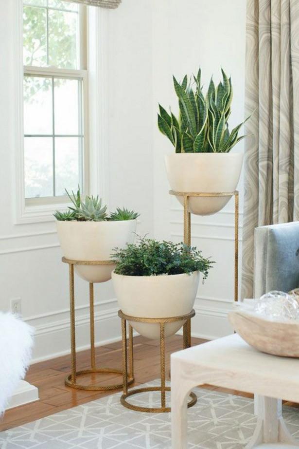 Wohnzimmer Pflanzen  Deko pflanzen wohnzimmer
