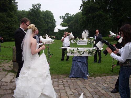 Ablauf Hochzeit Standesamt  hochzeitstauben hamburg Ablauf Hochzeit