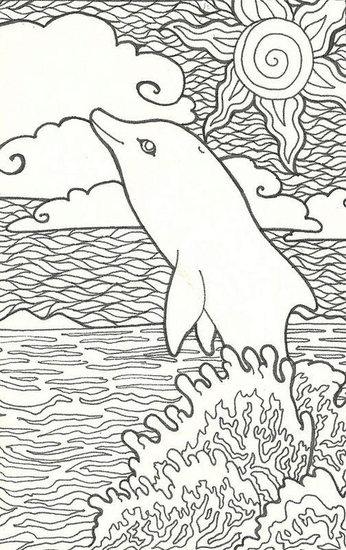 die besten ausmalbilder delphin - beste wohnkultur
