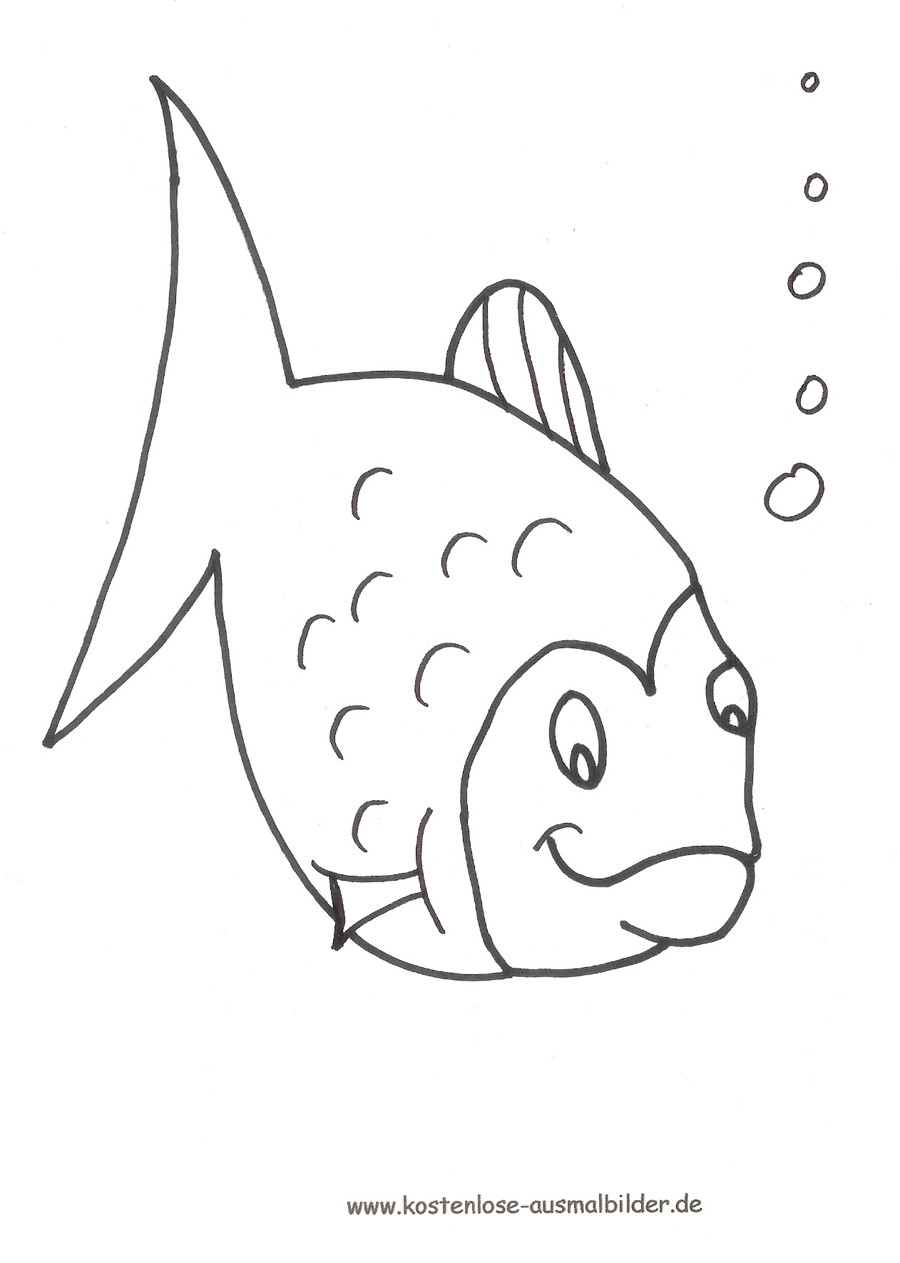20 besten ideen ausmalbilder fische aquarium  beste