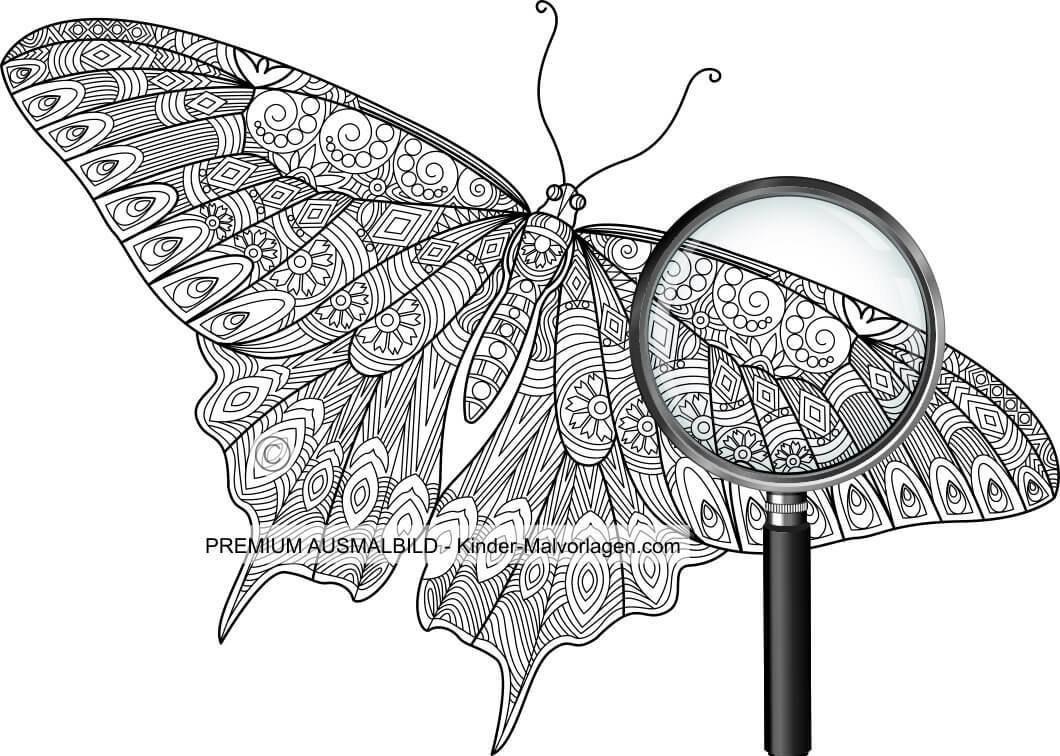 20 Besten Ausmalbilder Für Erwachsene Schmetterling ...