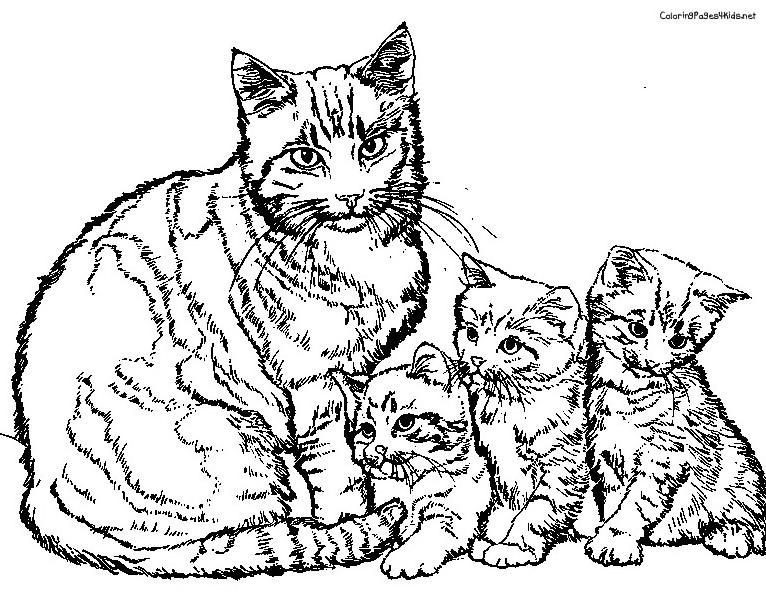 Ausmalbilder Katzen Kostenlos  Famous Katzen Bilder Zum Ausdrucken XV49