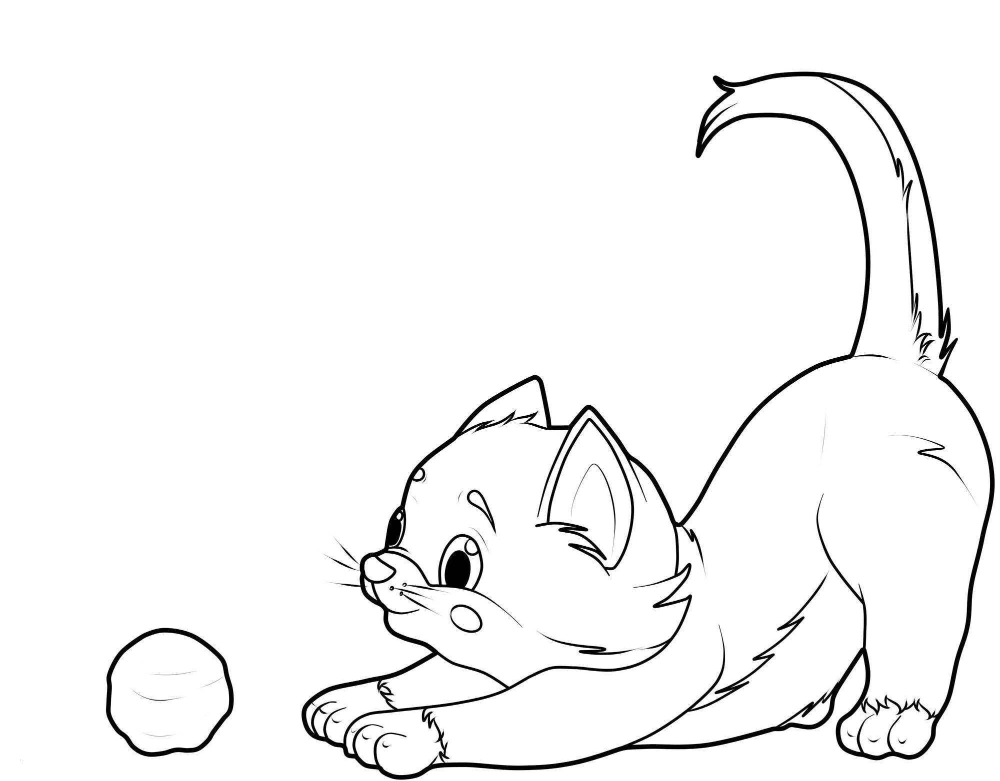 Ausmalbilder Katzen Kostenlos  Ausmalbilder Katzen Kostenlose Malvorlagen Zum