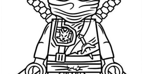 20 besten ideen ausmalbilder ninjago schlangen  beste