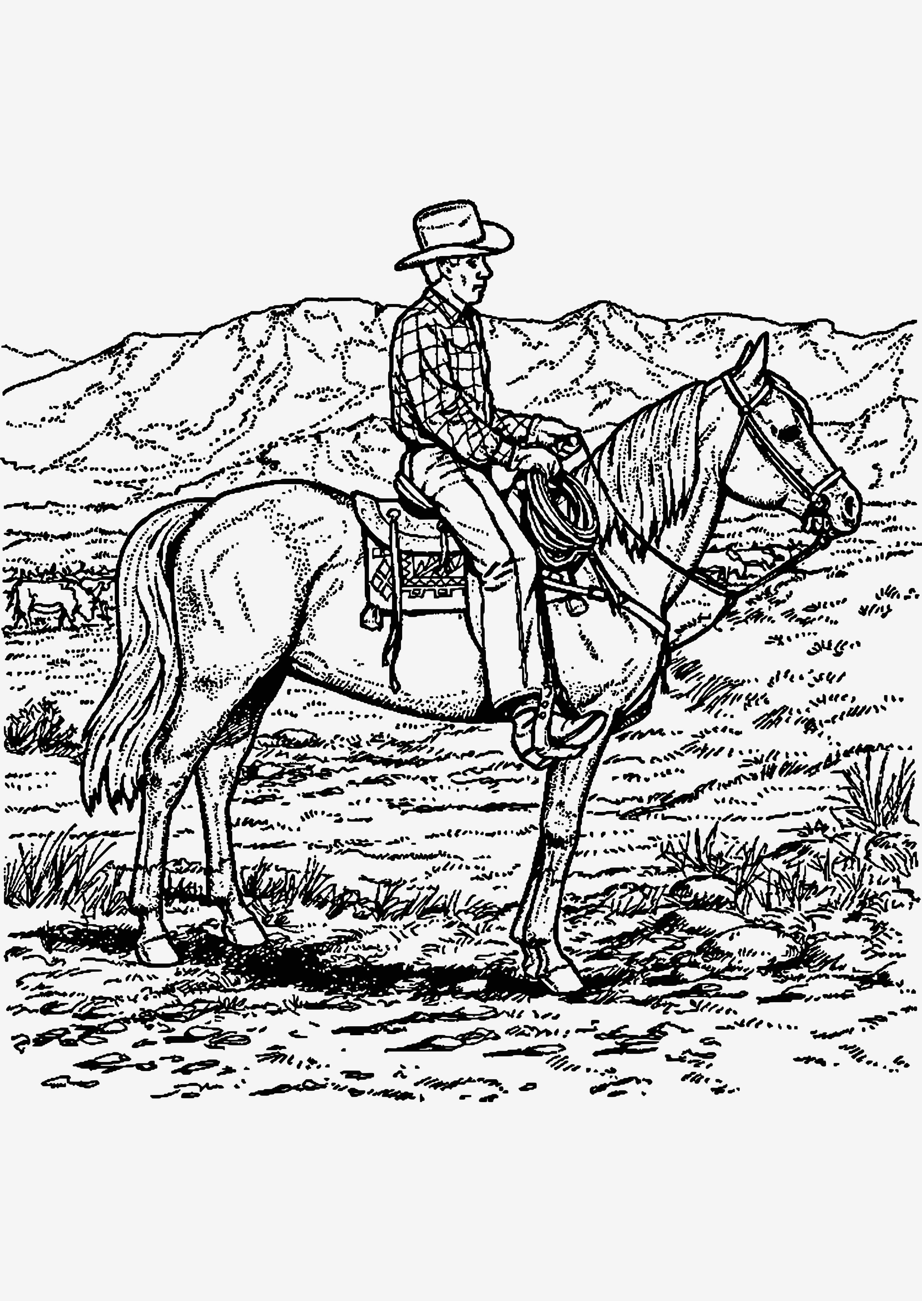 ausmalbilder pferde mit reiterin - reiten 5 - ausmalbilder