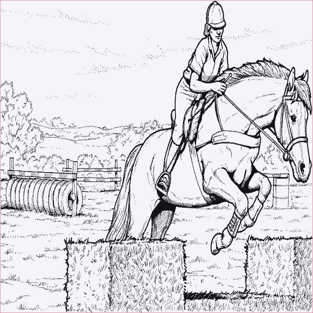 20 ideen für ausmalbilder pferde springreiten  beste