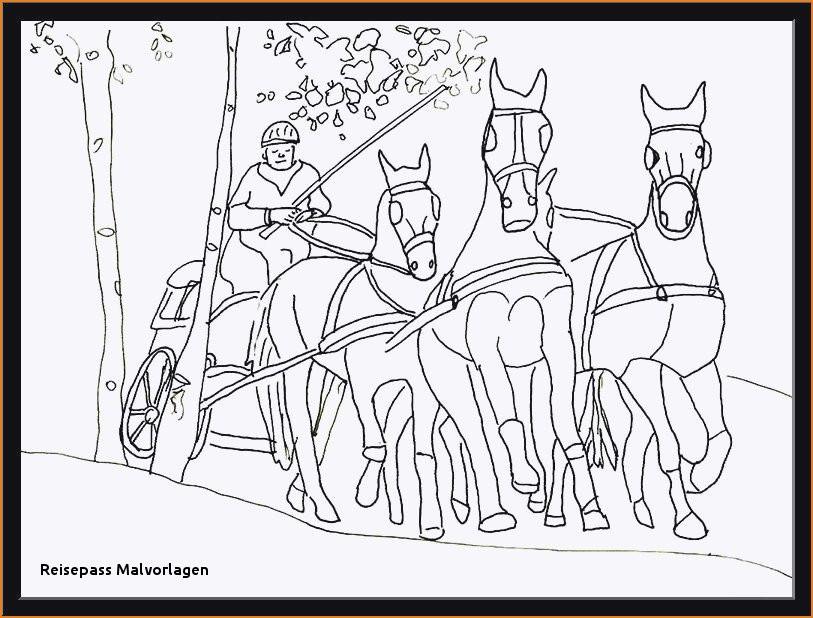 20 ideen für ausmalbilder schleich pferdehof  beste