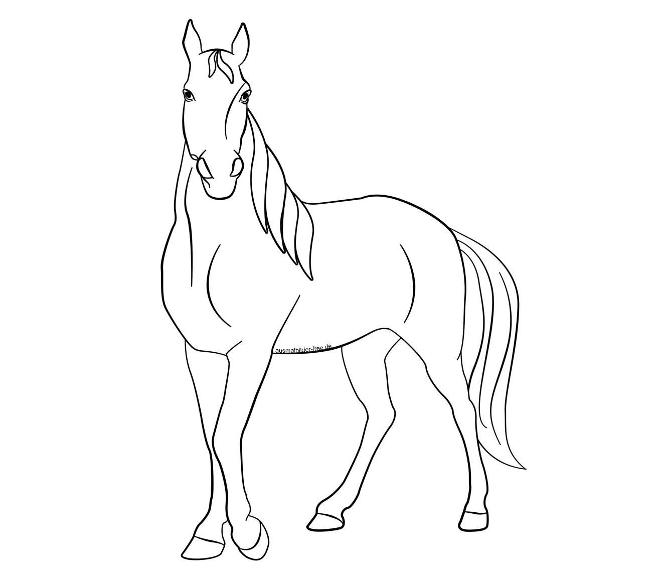 20 ideen für ausmalbilder tiere pferde - beste wohnkultur