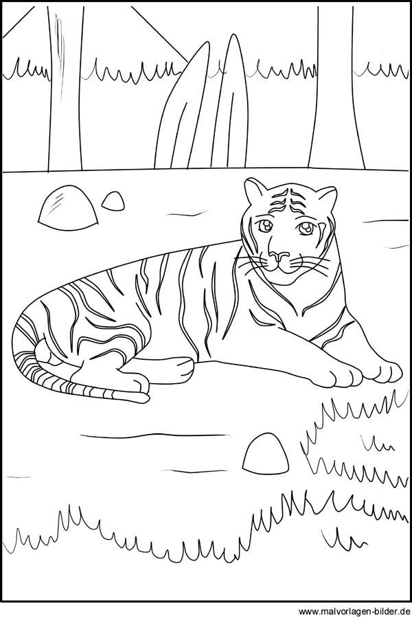 die besten ideen für ausmalbilder von tieren  beste