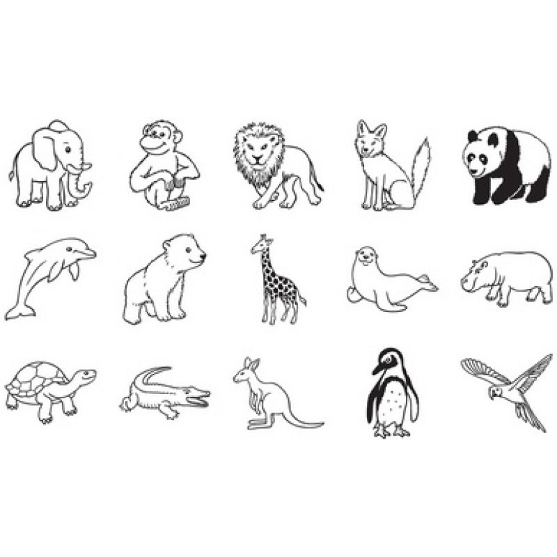 20 besten ausmalbilder zootiere  beste wohnkultur