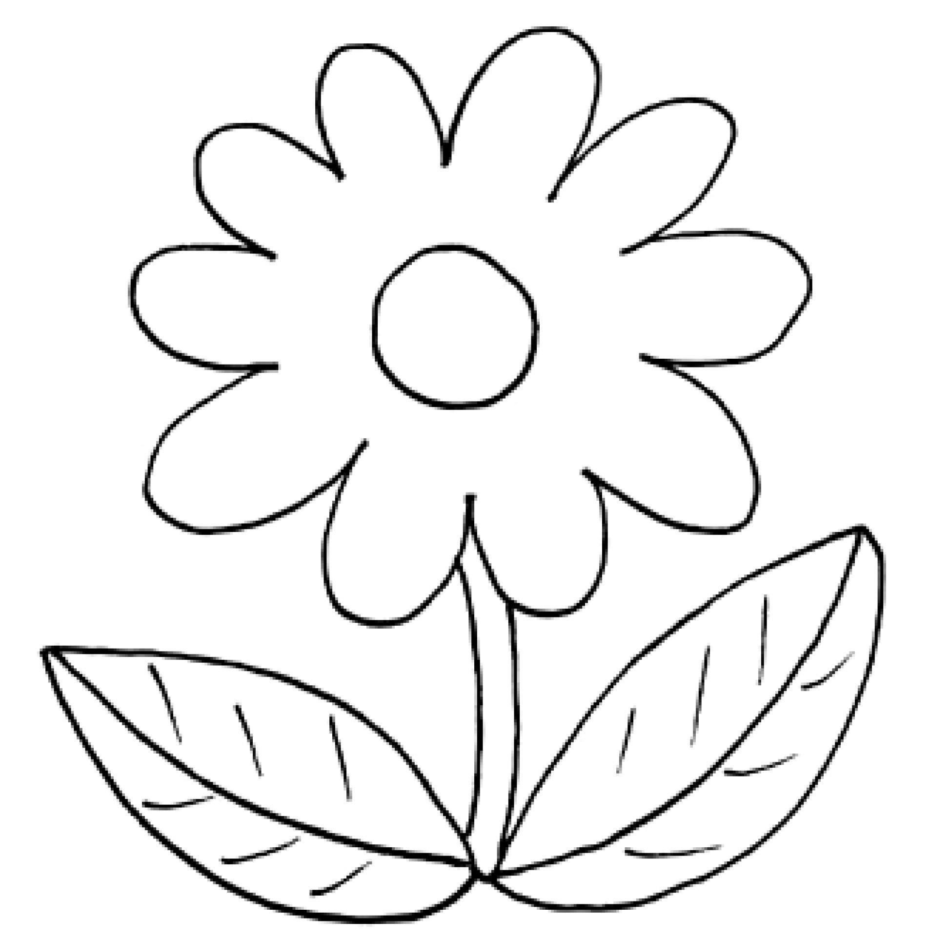 Blume Ausmalbilder  Ausmalbilder Frühling