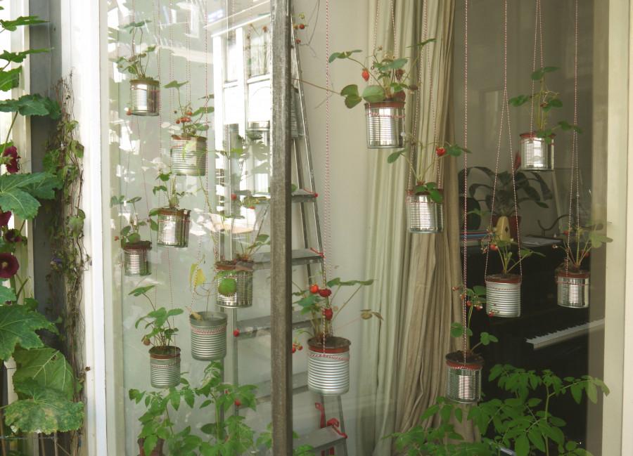 Blumentopf Aufhängen Diy  DIY Inspiration aus Amsterdam Hängende Gärten mit