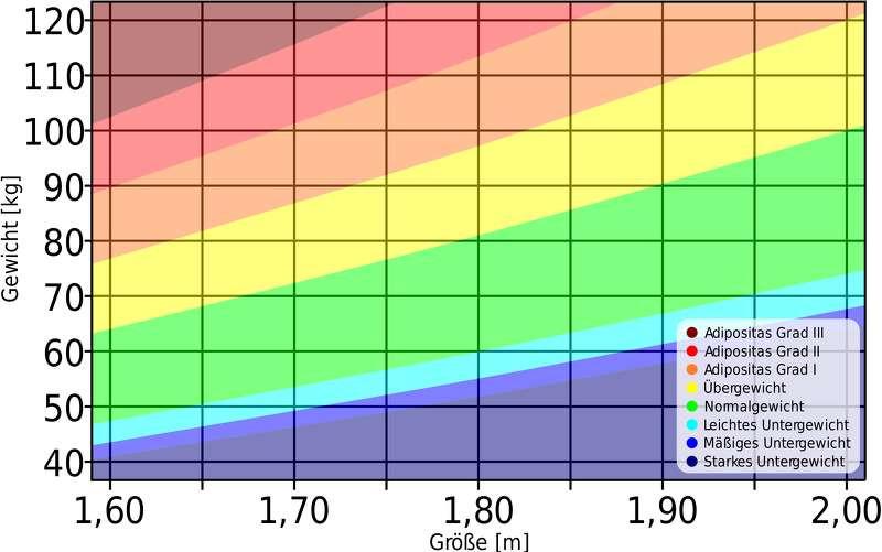 Body Mass Index Tabelle  BMI Rechner Wie hoch ist dein Body Mass Index