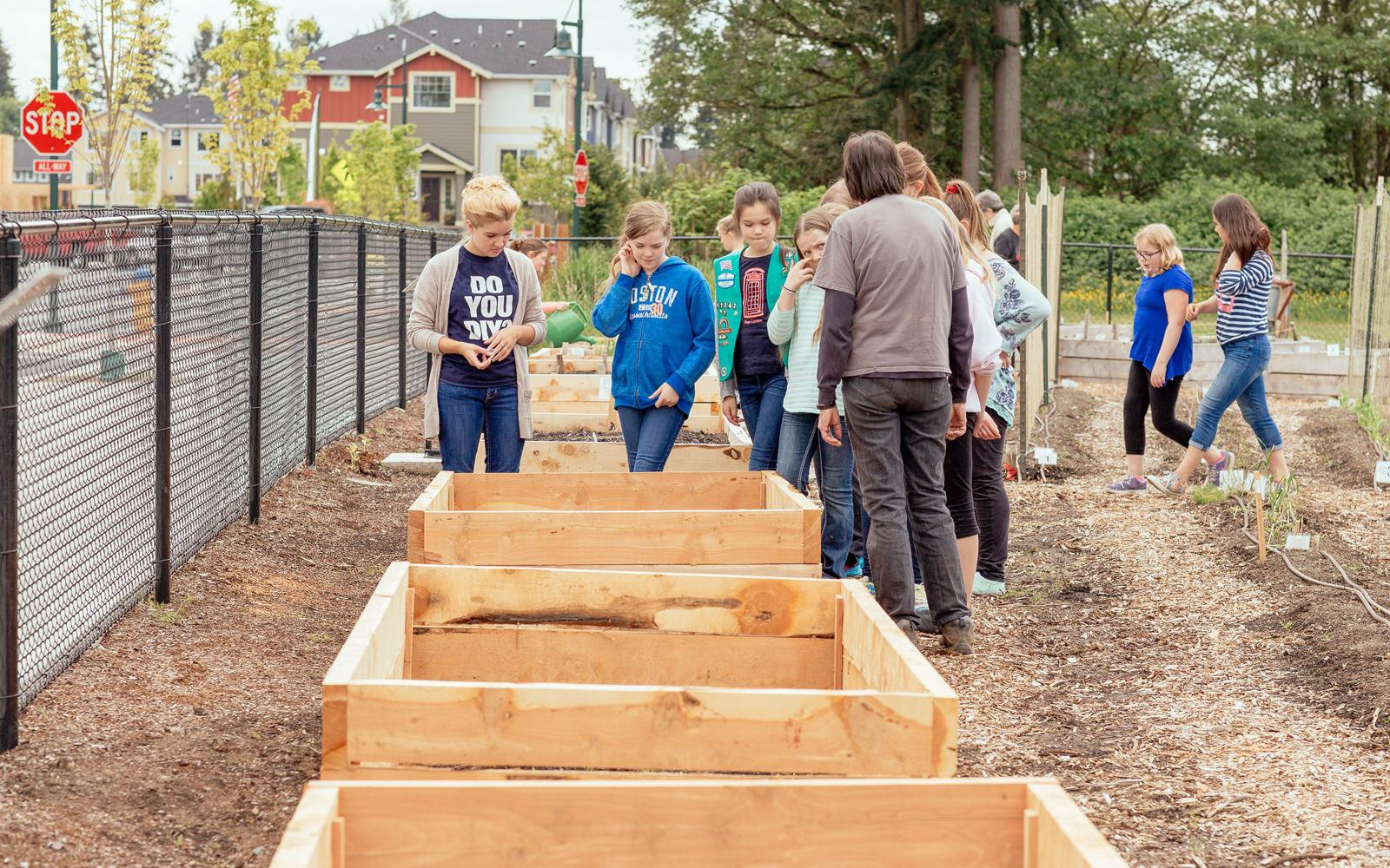 Diy Community  munity Gardening & DIY Planter Boxes