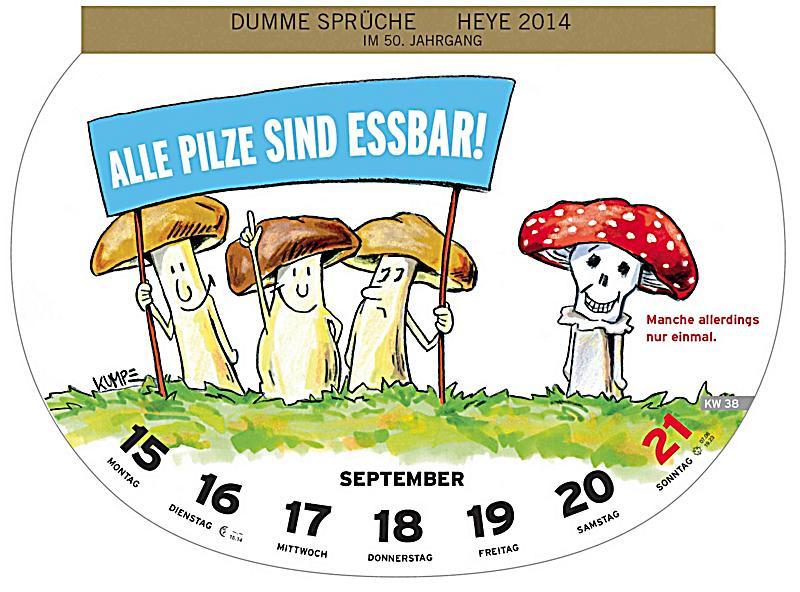 Dumme Geschenke  Dumme Sprüche Wochenkalender 2014 Kalender bei Weltbild
