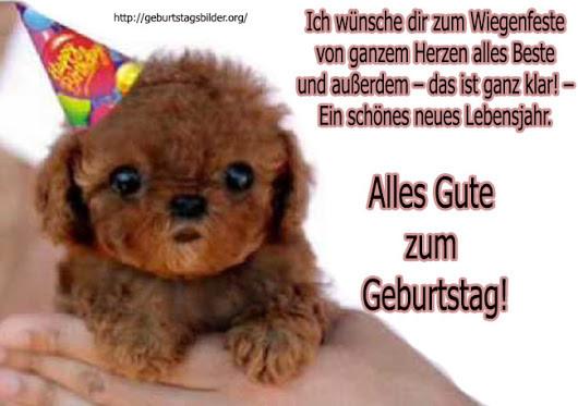 Geburtstagsbilder Hund  Geburtstagsbilder Google