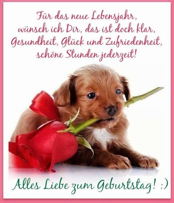 Geburtstagsbilder Hund  25 best ideas about Alles Gute Zum Geburtstag Hund auf