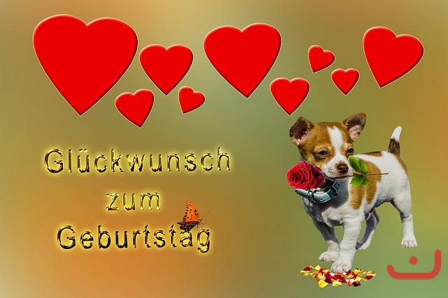 Geburtstagsbilder Hund  Hund mit Herz und Rose Kostenlose Geburtstagsbilder zum