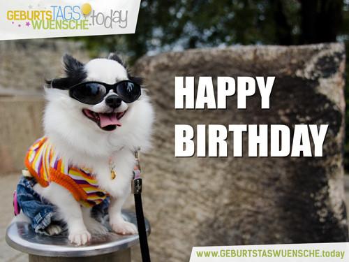 """Geburtstagsbilder Hund  Kostenlose Geburtstagsbilder lustiges Bild """"Happy Birthday"""""""