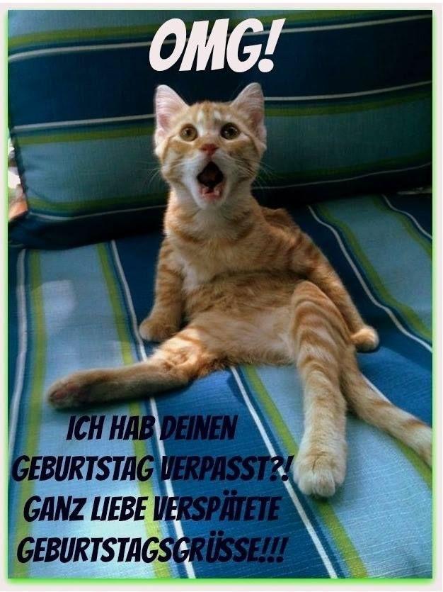 Geburtstagsbilder Katzen Kostenlos  OMG Ich hab deinen Geburtstag verpasst