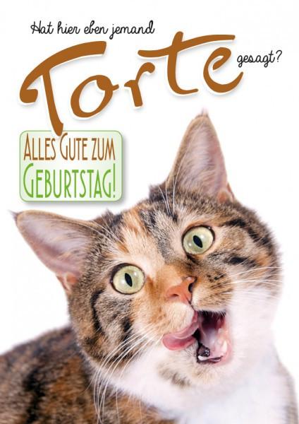 Geburtstagsbilder Katzen Kostenlos  Herzlichen Gluckwunsch Zum Geburtstag Katze
