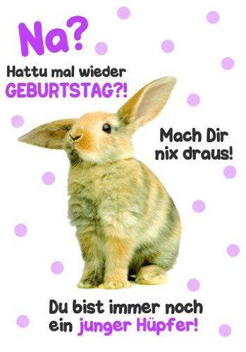 Geburtstagsbilder Witzig  Karte Geburtstag Motiv Tierisch gut drauf lustig freche