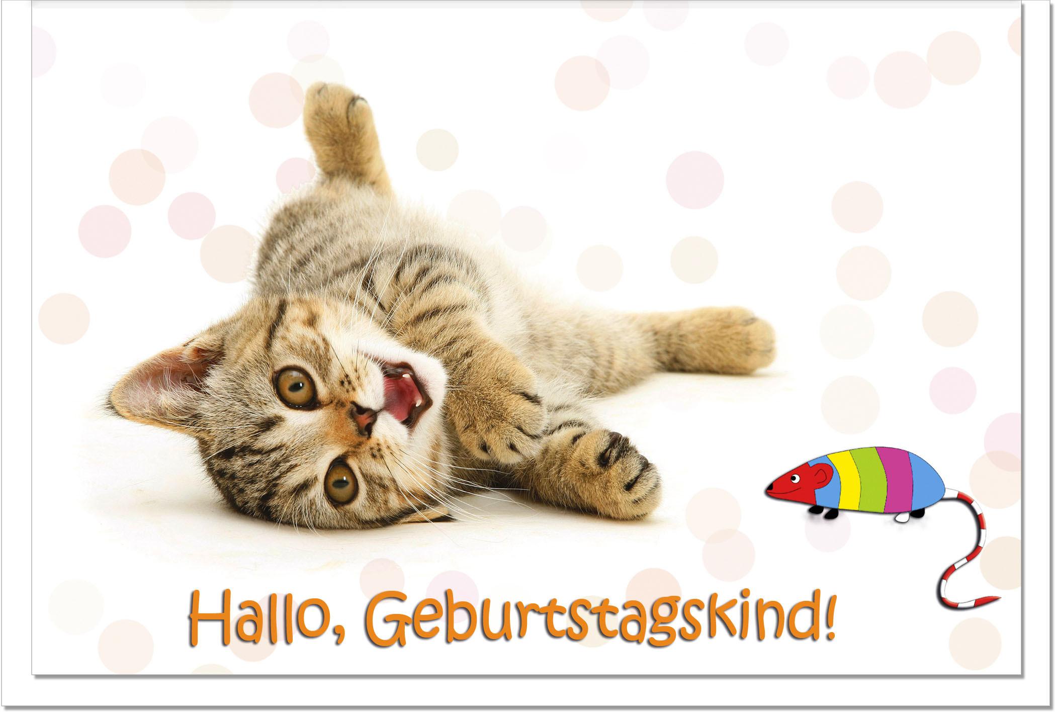 Geburtstagswünsche Katzen  Geburtstagskarten Grußkarten Geburtstag Katze mit Maus