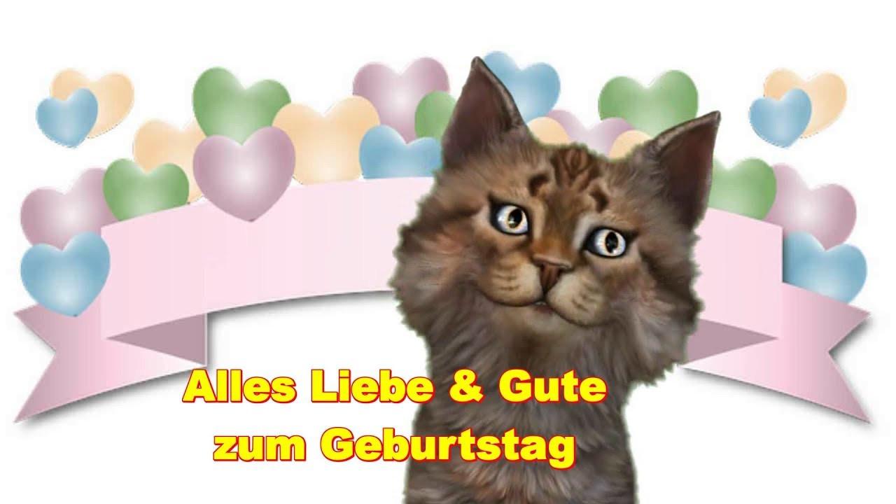 Geburtstagswünsche Katzen  Alles Liebe zum Geburtstag Birthday t