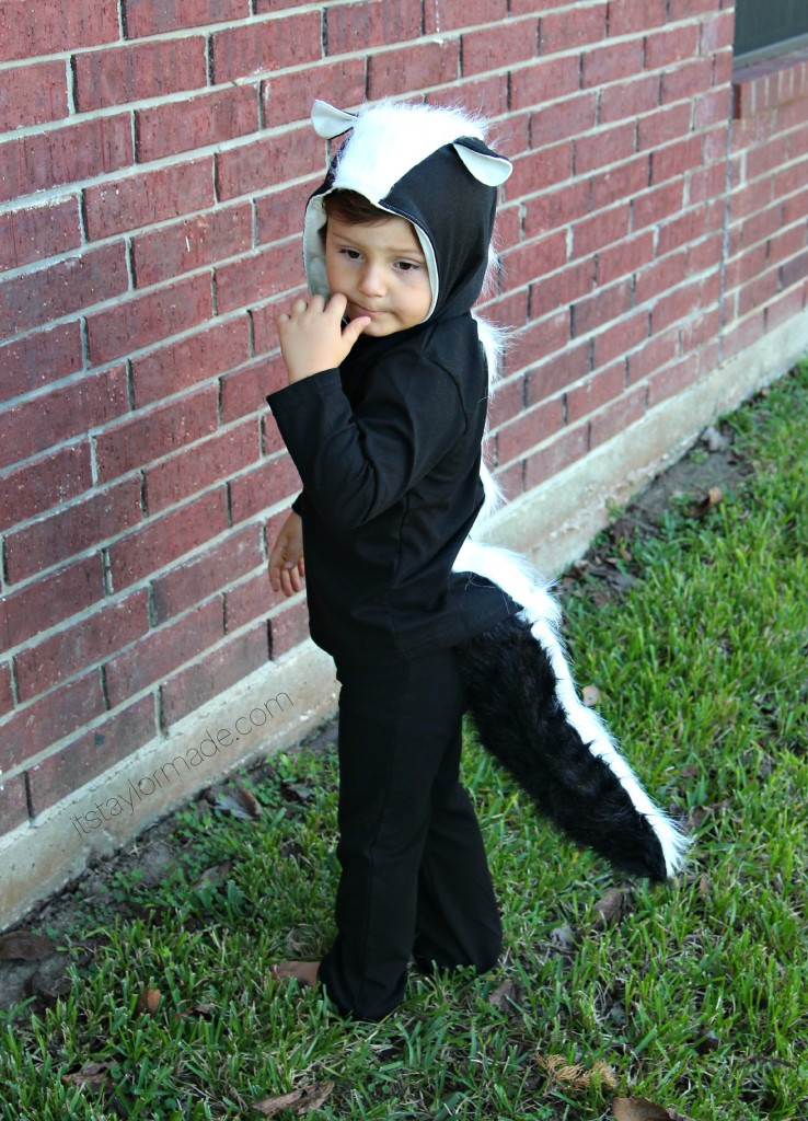 Halloween Diy Costumes  DIY Halloween Kids Costumes