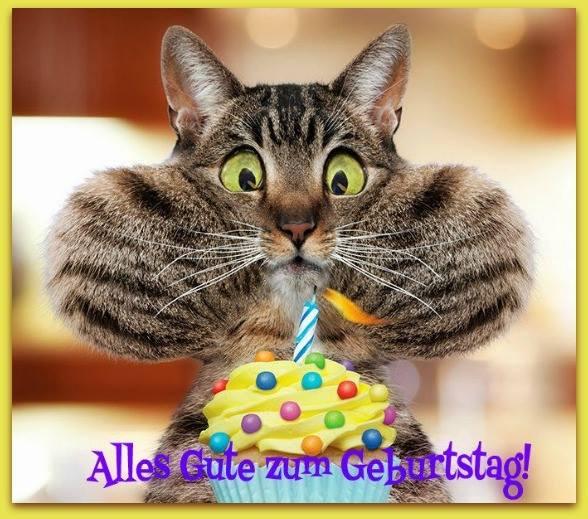 Katzen Geburtstagsbilder  Lustige Katze mit Geburtstagstorte Alles Gute zum