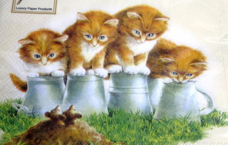 Katzen Geburtstagsbilder  Bilder Geburtstag Mit Katzen