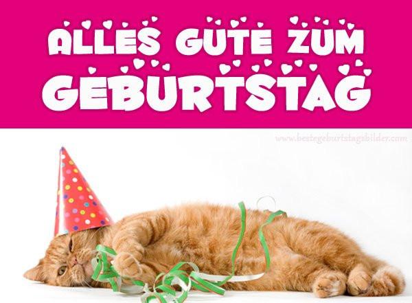 Katzen Geburtstagsbilder  geburtstagsbilder hashtag on Twitter