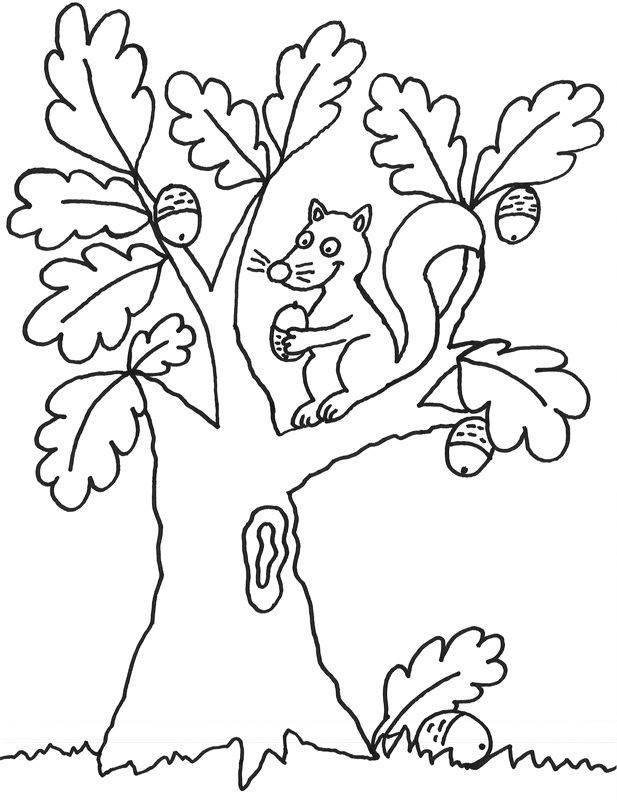 top 20 malvorlagen bäume  beste wohnkultur bastelideen