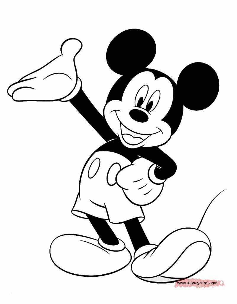 20 besten ideen malvorlagen mickey mouse  beste